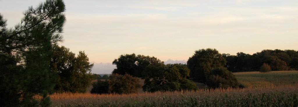 Face à la ferme, les collines boisées et la chaîne des Pyrénées